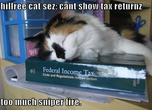 Just a little 2008 Democratic primary lolcat tax humor, courtesy of Google