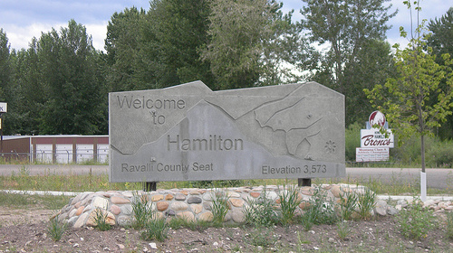 Welcome to Hamilton! We hate you.
